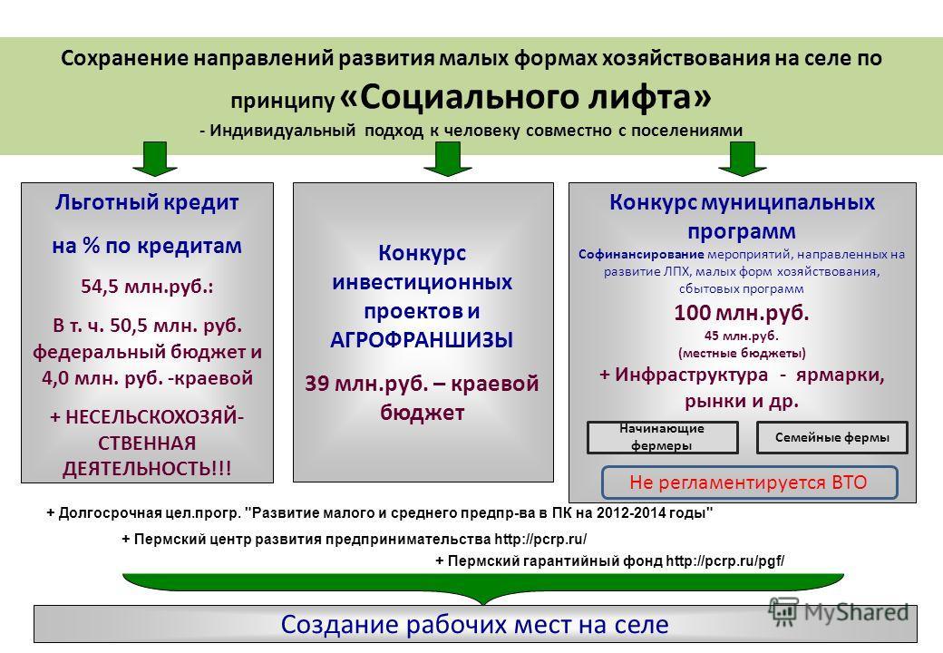 Конкурс муниципальных программ Софинансирование мероприятий, направленных на развитие ЛПХ, малых форм хозяйствования, сбытовых программ 100 млн.руб. 45 млн.руб. (местные бюджеты) + Инфраструктура - ярмарки, рынки и др. Создание рабочих мест на селе С