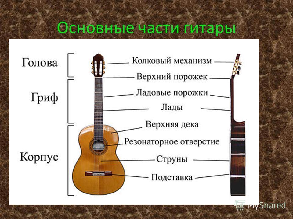 Основные части гитары
