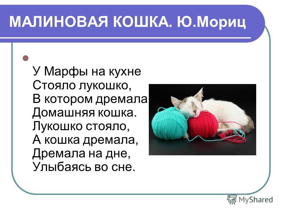 МАЛИНОВАЯ КОШКА. Ю.Мориц У Марфы на кухне Стояло лукошко, В котором дремала Домашняя кошка. Лукошко стояло, А кошка дремала, Дремала на дне, Улыбаясь во сне.