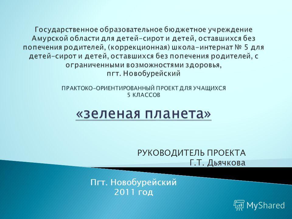 РУКОВОДИТЕЛЬ ПРОЕКТА Г.Т. Дьячкова Пгт. Новобурейский 2011 год