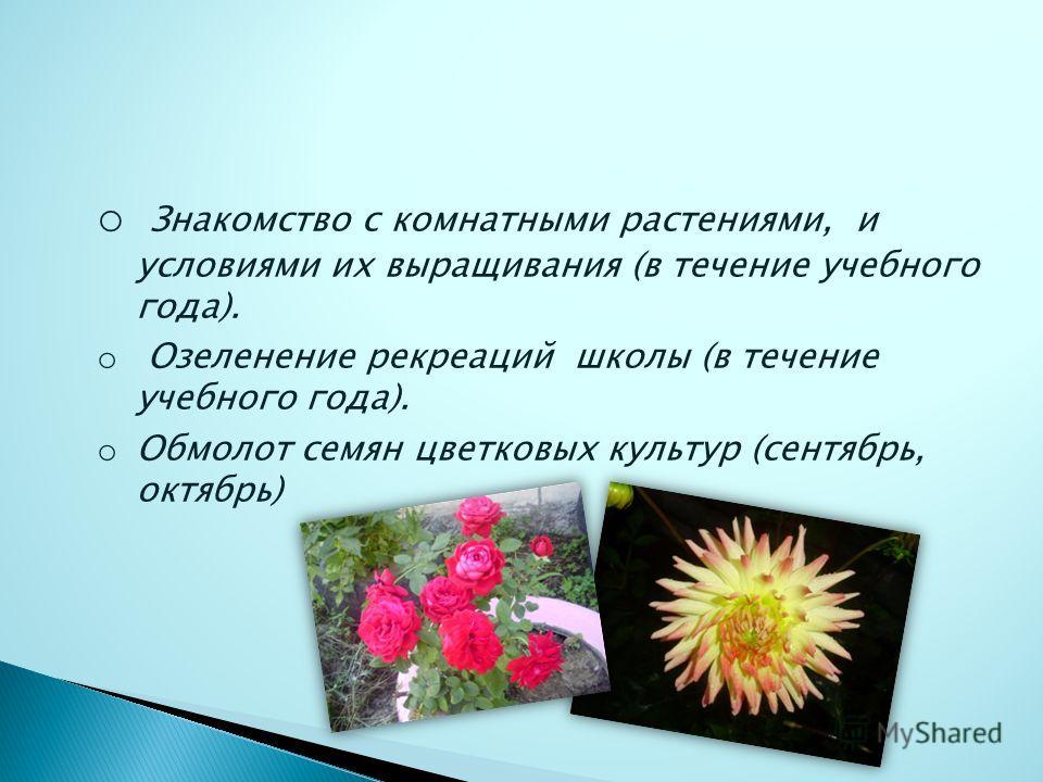 o Знакомство с комнатными растениями, и условиями их выращивания (в течение учебного года). o Озеленение рекреаций школы (в течение учебного года). o Обмолот семян цветковых культур (сентябрь, октябрь)