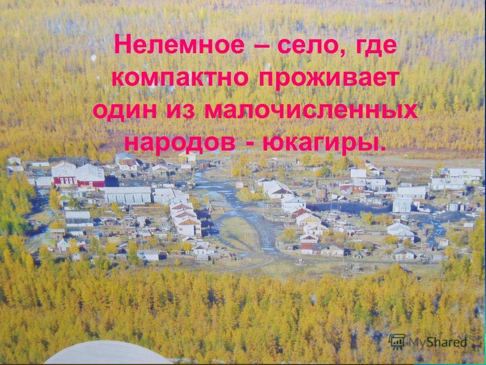 Нелемное – село, где компактно проживает один из малочисленных народов - юкагиры.