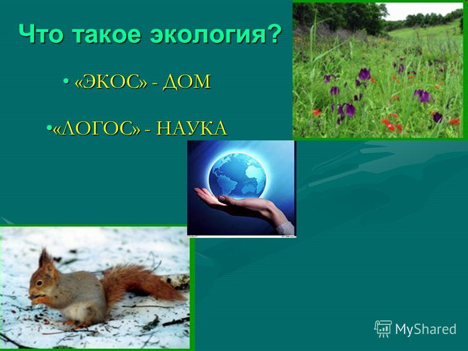Что такое экология? «ЭКОС» - ДОМ «ЭКОС» - ДОМ «ЛОГОС» - НАУКА«ЛОГОС» - НАУКА