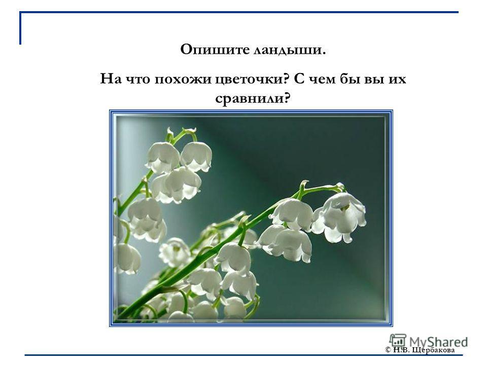© Н.В. Щербакова Опишите ландыши. На что похожи цветочки? С чем бы вы их сравнили?