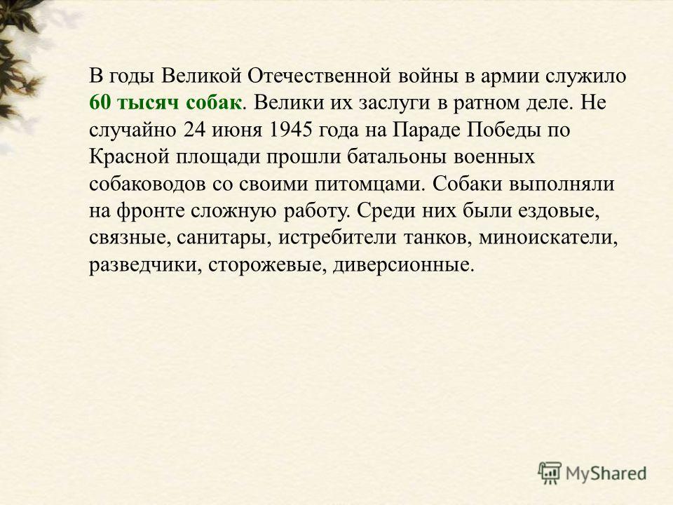 В годы Великой Отечественной войны в армии служило 60 тысяч собак. Велики их заслуги в ратном деле. Не случайно 24 июня 1945 года на Параде Победы по Красной площади прошли батальоны военных собаководов со своими питомцами. Собаки выполняли на фронте