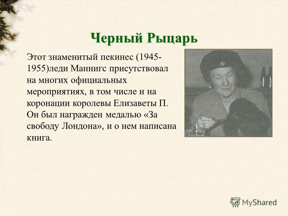 Этот знаменитый пекинес (1945- 1955)леди Маннигс присутствовал на многих официальных мероприятиях, в том числе и на коронации королевы Елизаветы П. Он был награжден медалью «За свободу Лондона», и о нем написана книга. Черный Рыцарь