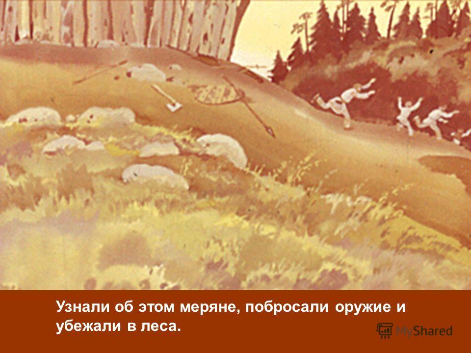 Узнали об этом меряне, побросали оружие и убежали в леса.