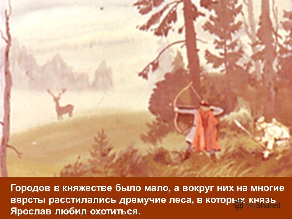 Городов в княжестве было мало, а вокруг них на многие версты расстилались дремучие леса, в которых князь Ярослав любил охотиться.