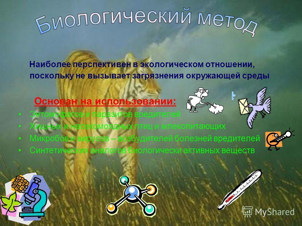 Наиболее перспективен в экологическом отношении, поскольку не вызывает загрязнения окружающей среды Основан на использовании: Энтомофагов и паразитов вредителей Хищных и насекомоядных птиц и млекопитающих Микробов и вирусов – возбудителей болезней вр