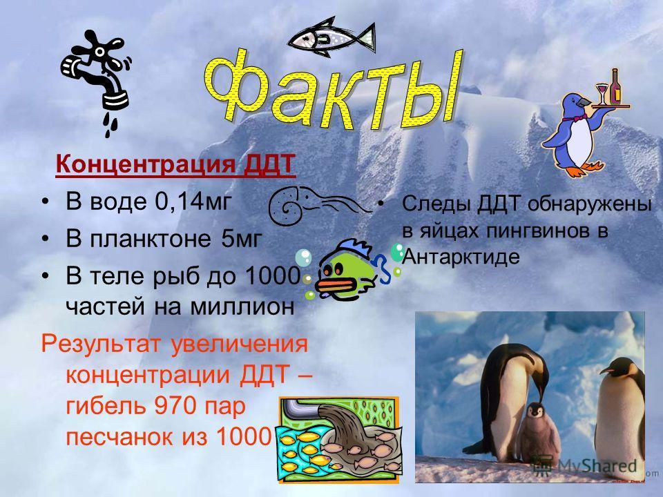 Концентрация ДДТ В воде 0,14мг В планктоне 5мг В теле рыб до 1000 частей на миллион Результат увеличения концентрации ДДТ – гибель 970 пар песчанок из 1000 Следы ДДТ обнаружены в яйцах пингвинов в Антарктиде