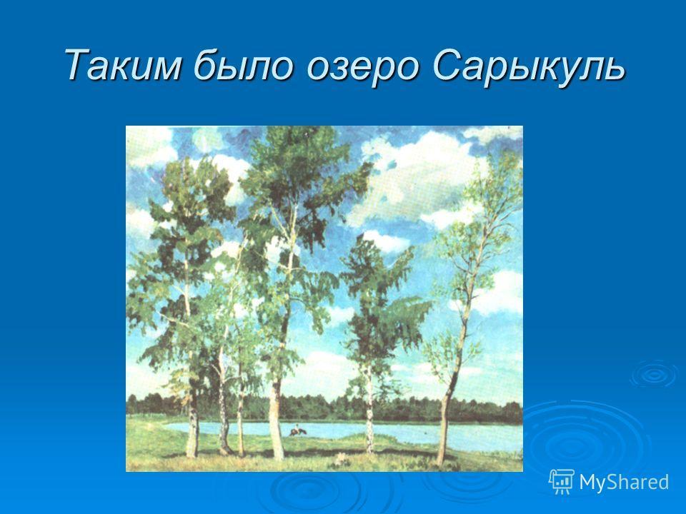 Таким было озеро Сарыкуль