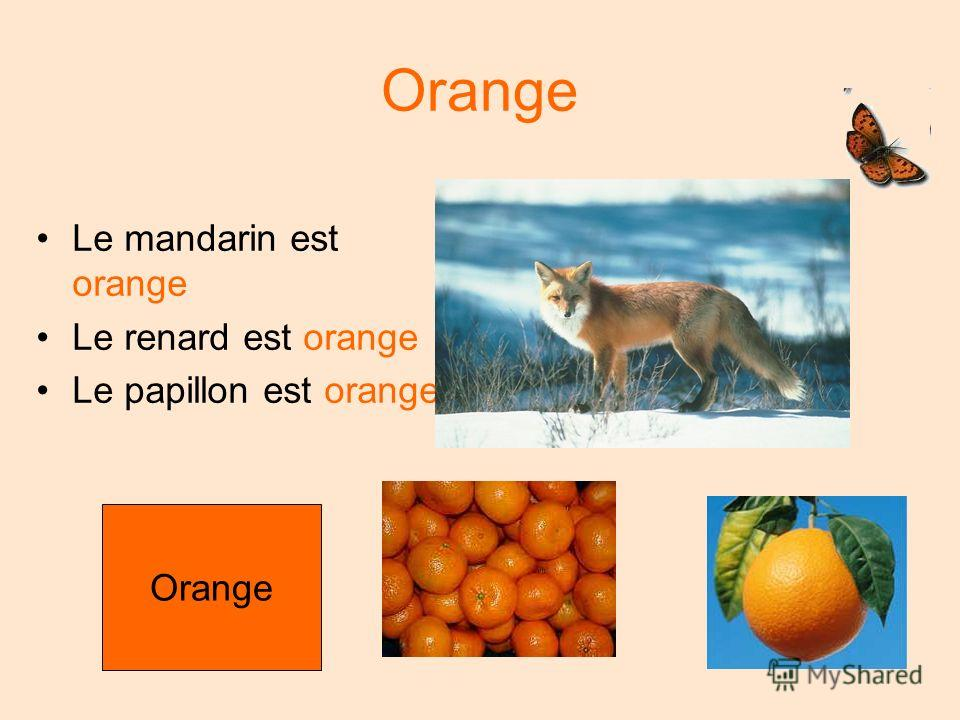 Orange Le mandarin est orange Le renard est orange Le papillon est orange Orange