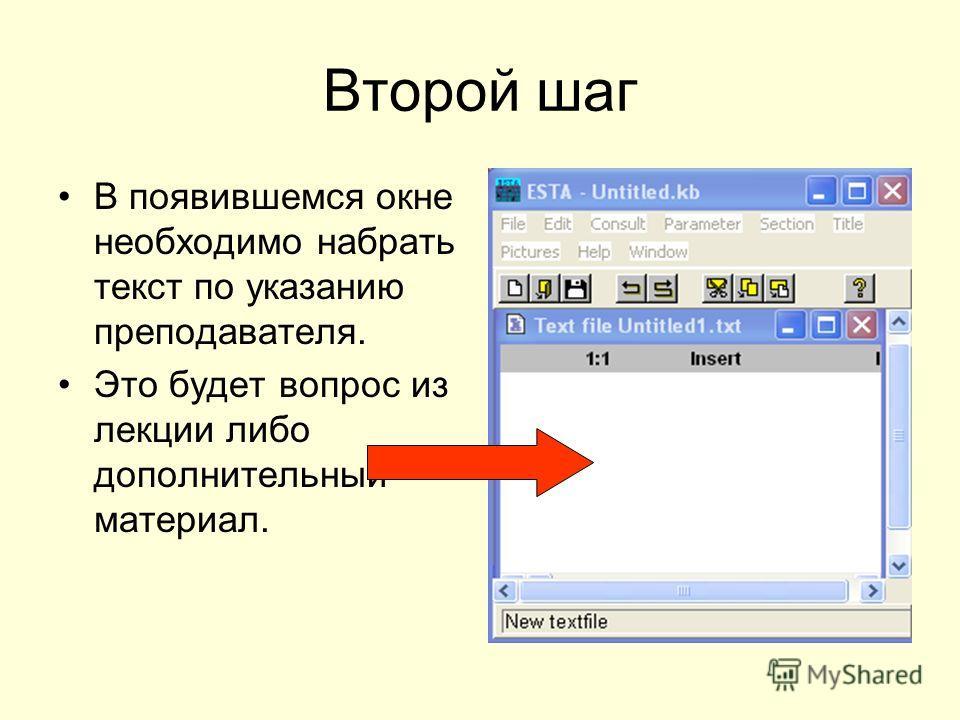 Второй шаг В появившемся окне необходимо набрать текст по указанию преподавателя. Это будет вопрос из лекции либо дополнительный материал.