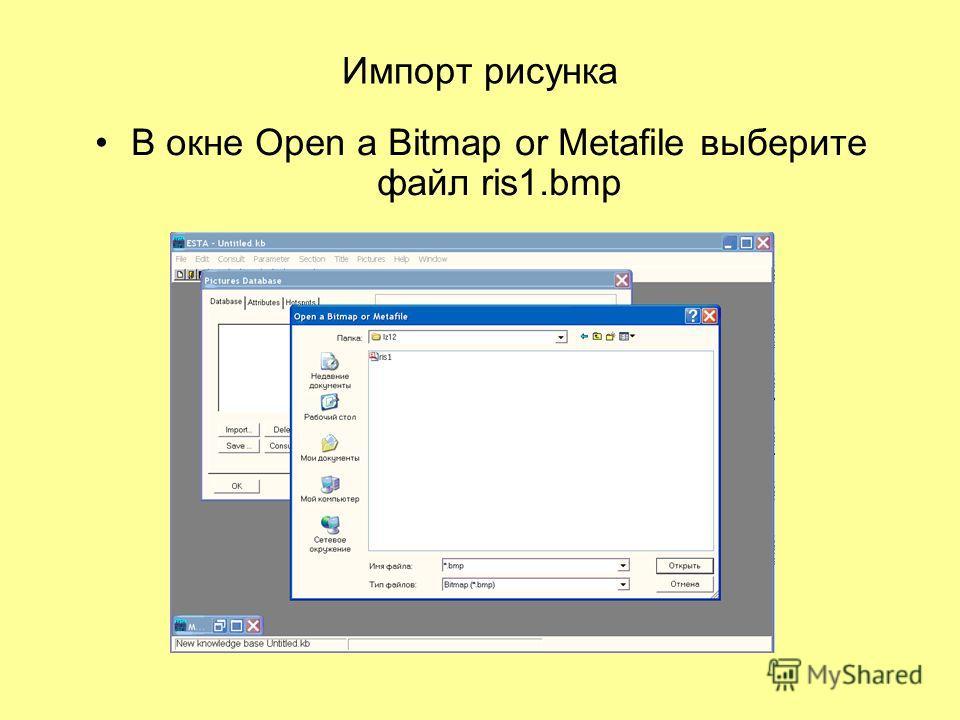 Импорт рисунка В окне Open a Bitmap or Metafile выберите файл ris1.bmp