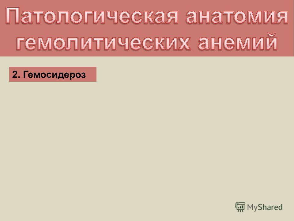 2. Гемосидероз