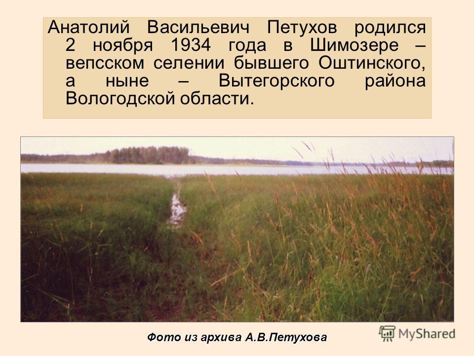 Анатолий Васильевич Петухов родился 2 ноября 1934 года в Шимозере – вепсском селении бывшего Оштинского, а ныне – Вытегорского района Вологодской области. Фото из архива А.В.Петухова