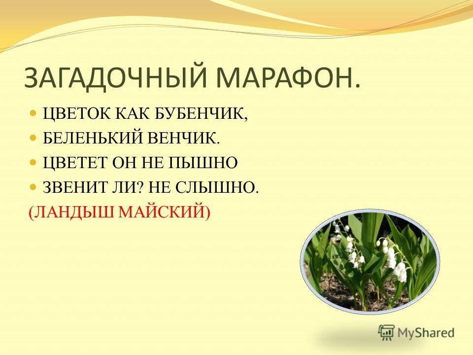ЗАГАДОЧНЫЙ МАРАФОН. ВДОЛЬ ДОРОГИ И ПО СКАТАМ БЕГАЮТ ДО ТЕМНОТЫ, СЛОВНО ЖЕЛТЫЕ ЦЫПЛЯТА, ЭТИ НЕЖНЫЕ ЦВЕТЫ. А СТЕМНЕЕТ – СОБЕРУТСЯ ПОД ЛИСТОМ, КАК ПОД КРЫЛОМ, В МЯГКИЙ, ТЕПЛЫЙ МЕХ УТКНУТСЯ И ЗАСНУТ СЧАСТЛИВЫМ СНОМ. (МАТЬ – И – МАЧЕХА)