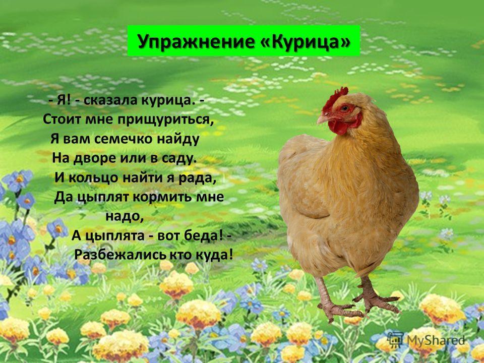 - Я! - сказала курица. - Стоит мне прищуриться, Я вам семечко найду На дворе или в саду. И кольцо найти я рада, Да цыплят кормить мне надо, А цыплята - вот беда! - Разбежались кто куда! Упражнение «Курица»