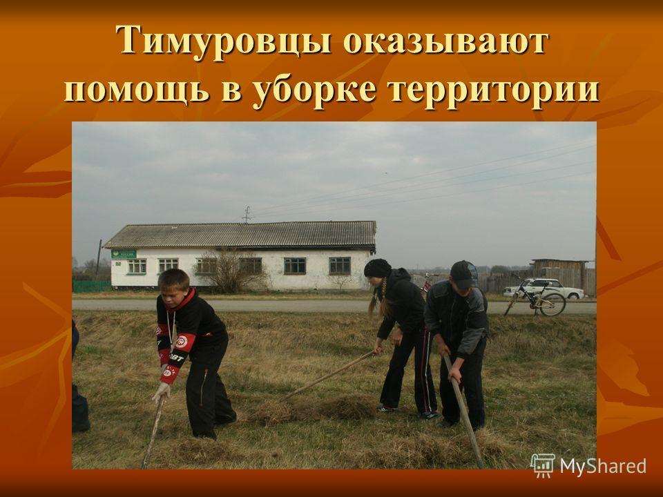 Тимуровцы оказывают помощь в уборке территории