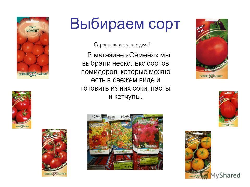 Выбираем сорт Сорт решает успех дела! В магазине «Семена» мы выбрали несколько сортов помидоров, которые можно есть в свежем виде и готовить из них соки, пасты и кетчупы.