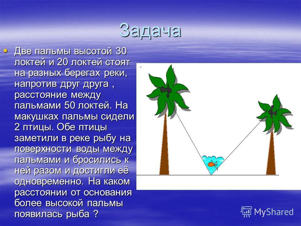 Задача Две пальмы высотой 30 локтей и 20 локтей стоят на разных берегах реки, напротив друг друга, расстояние между пальмами 50 локтей. На макушках пальмы сидели 2 птицы. Обе птицы заметили в реке рыбу на поверхности воды между пальмами и бросились к