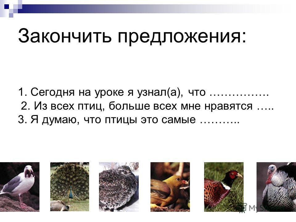 Закончить предложения: 1. Сегодня на уроке я узнал(а), что ……………. 2. Из всех птиц, больше всех мне нравятся ….. 3. Я думаю, что птицы это самые ………..