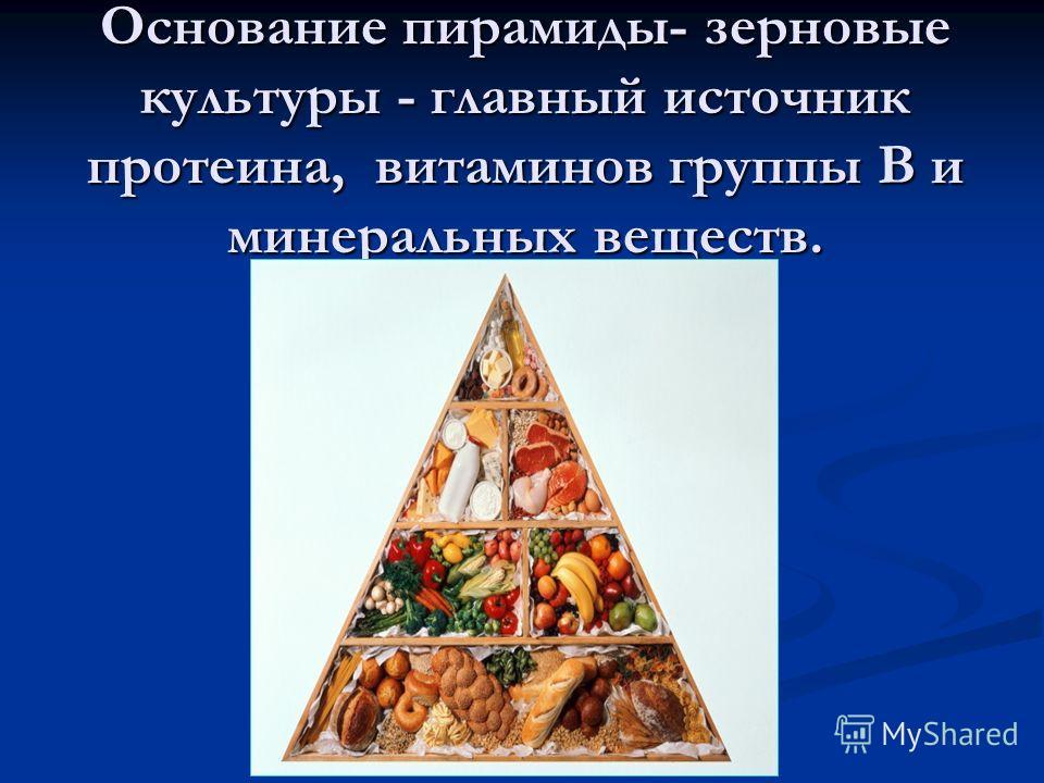 Основание пирамиды- зерновые культуры - главный источник протеина, витаминов группы В и минеральных веществ.
