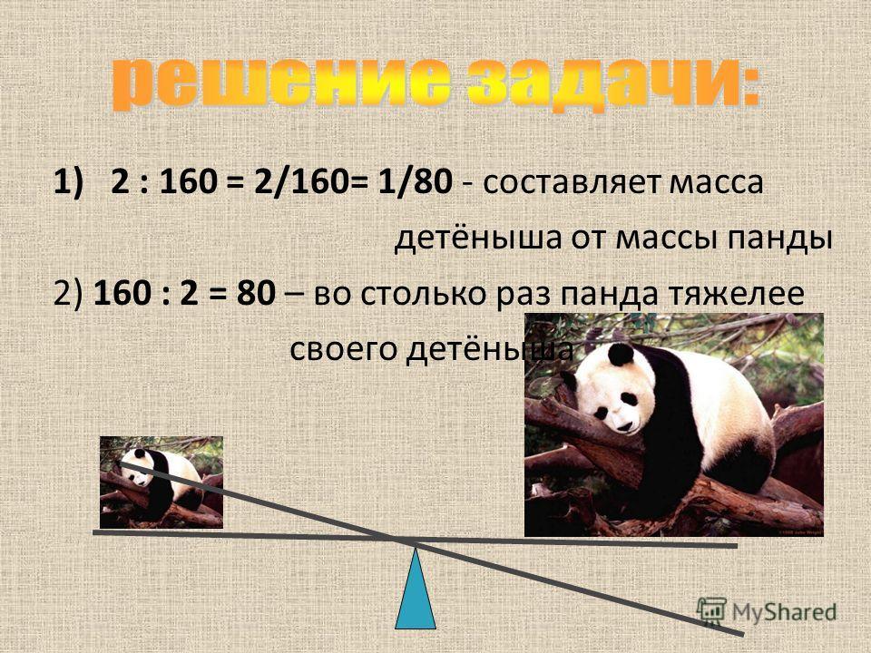 1)2 : 160 = 2/160= 1/80 - составляет масса детёныша от массы панды 2) 160 : 2 = 80 – во столько раз панда тяжелее своего детёныша