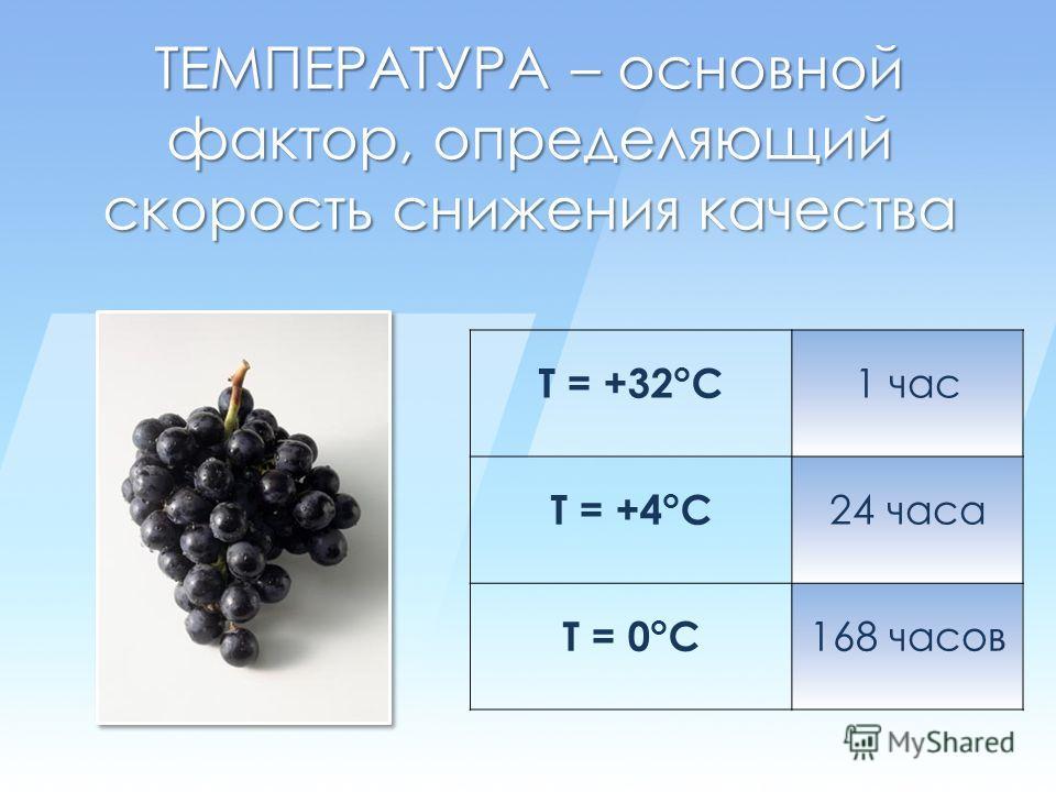 ТЕМПЕРАТУРА – основной фактор, определяющий скорость снижения качества T = +32 o C 1 час T = +4 o C 24 часа T = 0 o C 168 часов