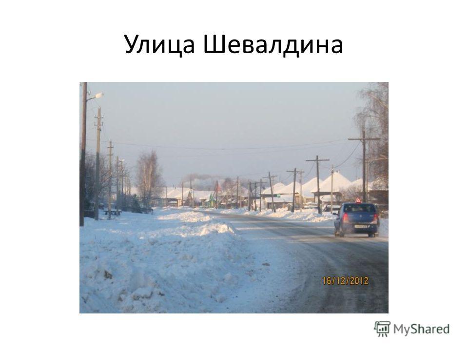 Улица Шевалдина