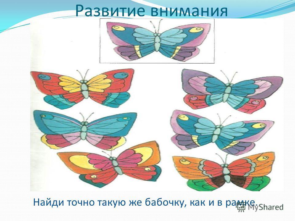 Развитие внимания Найди точно такую же бабочку, как и в рамке.