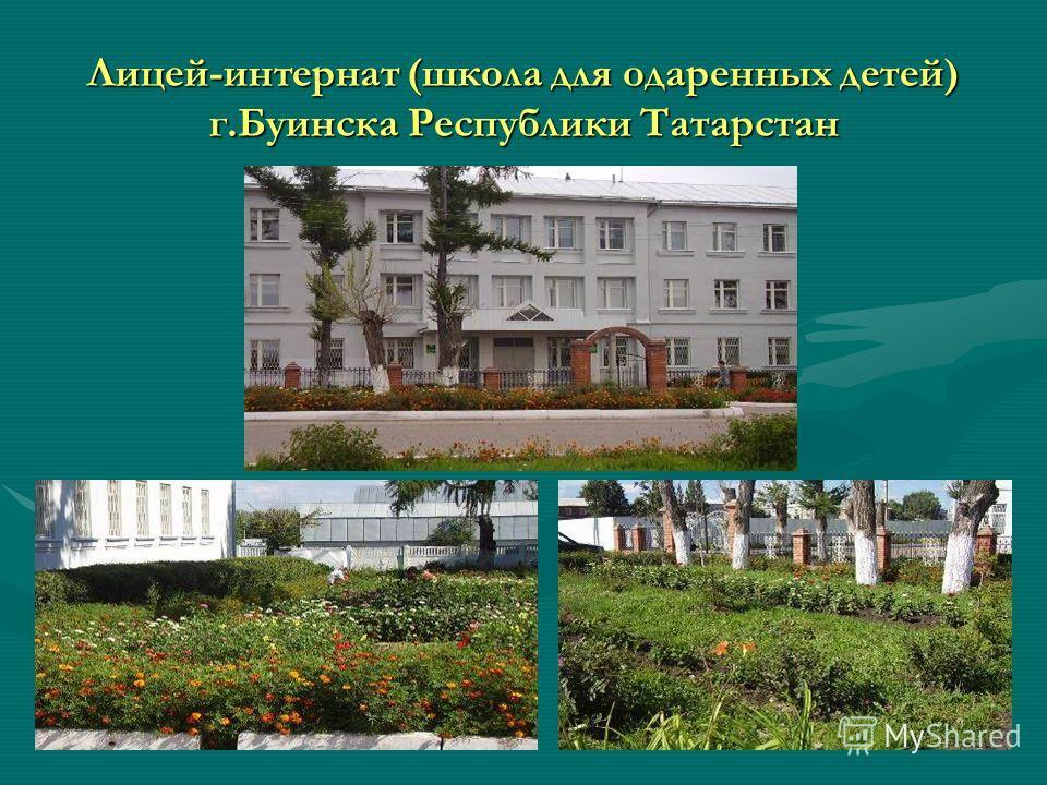 Лицей-интернат (школа для одаренных детей) г.Буинска Республики Татарстан