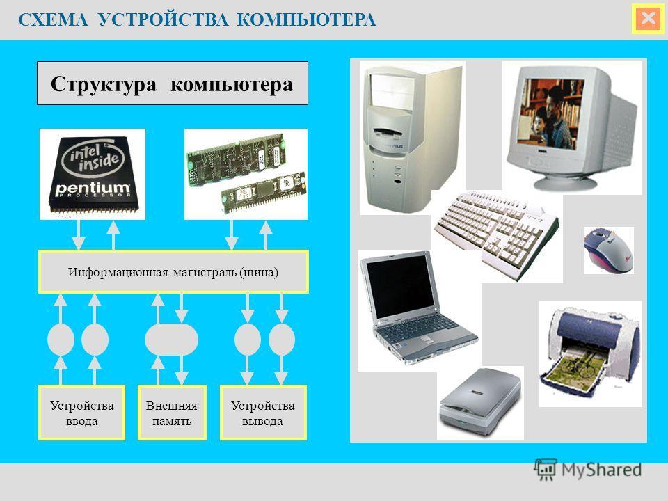 СХЕМА УСТРОЙСТВА КОМПЬЮТЕРА Информационная магистраль (шина) Устройства ввода Устройства вывода Внешняя память Структура компьютера