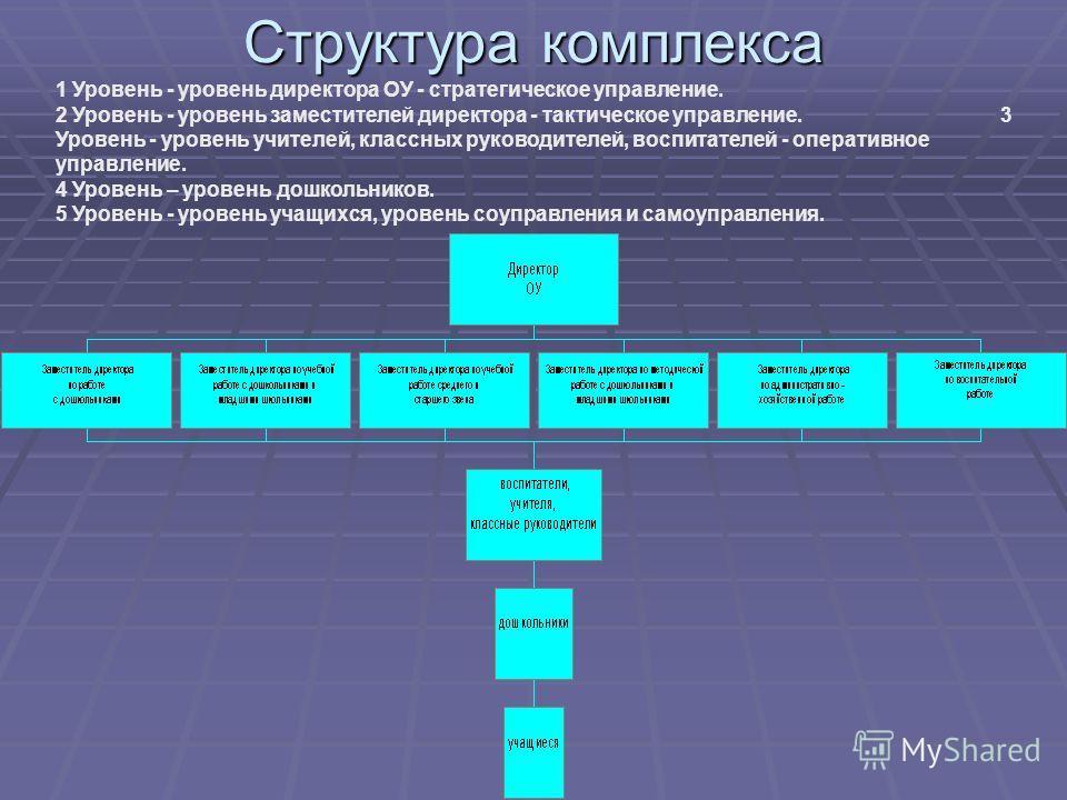 Структура комплекса 1 Уровень - уровень директора ОУ - стратегическое управление. 2 Уровень - уровень заместителей директора - тактическое управление. 3 Уровень - уровень учителей, классных руководителей, воспитателей - оперативное управление. 4 Уров