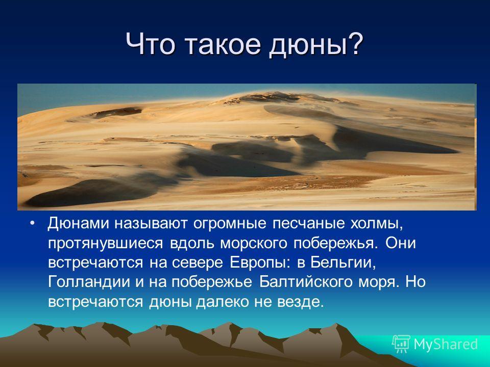 Что такое дюны? Дюнами называют огромные песчаные холмы, протянувшиеся вдоль морского побережья. Они встречаются на севере Европы: в Бельгии, Голландии и на побережье Балтийского моря. Но встречаются дюны далеко не везде.