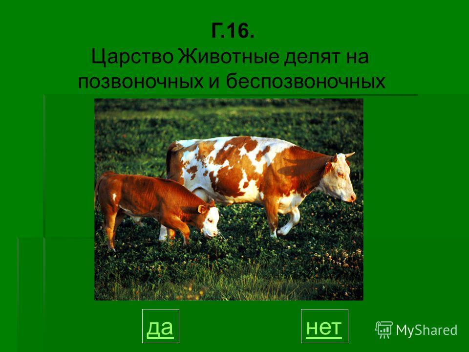 Г.16. Царство Животные делят на позвоночных и беспозвоночных данет