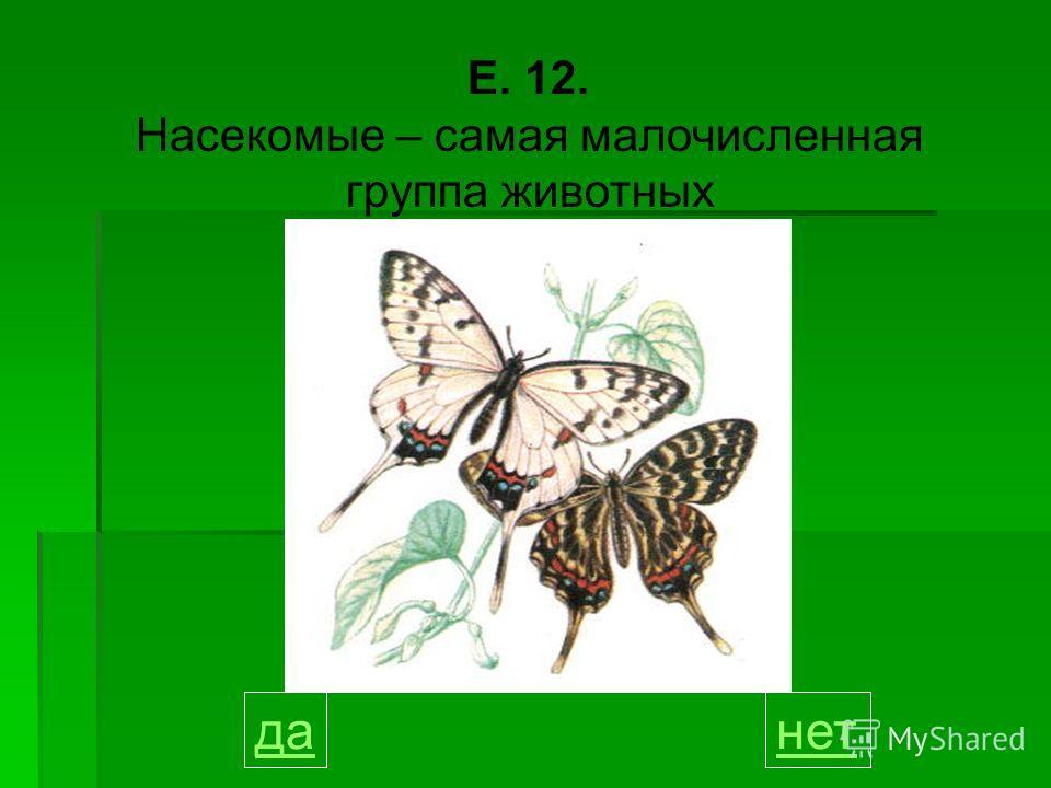 Е. 12. Насекомые – самая малочисленная группа животных данет