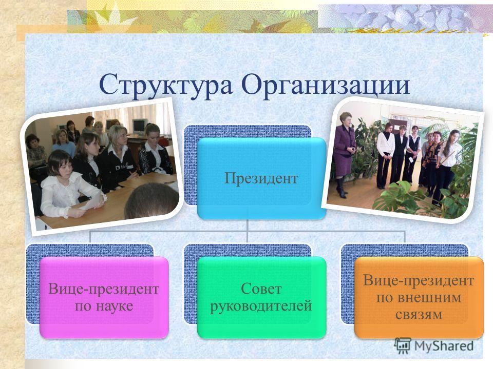 Структура Организации Президент Вице-президент по науке Совет руководителей Вице-президент по внешним связям