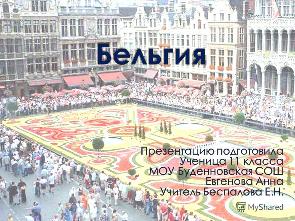 Бельгия член союза