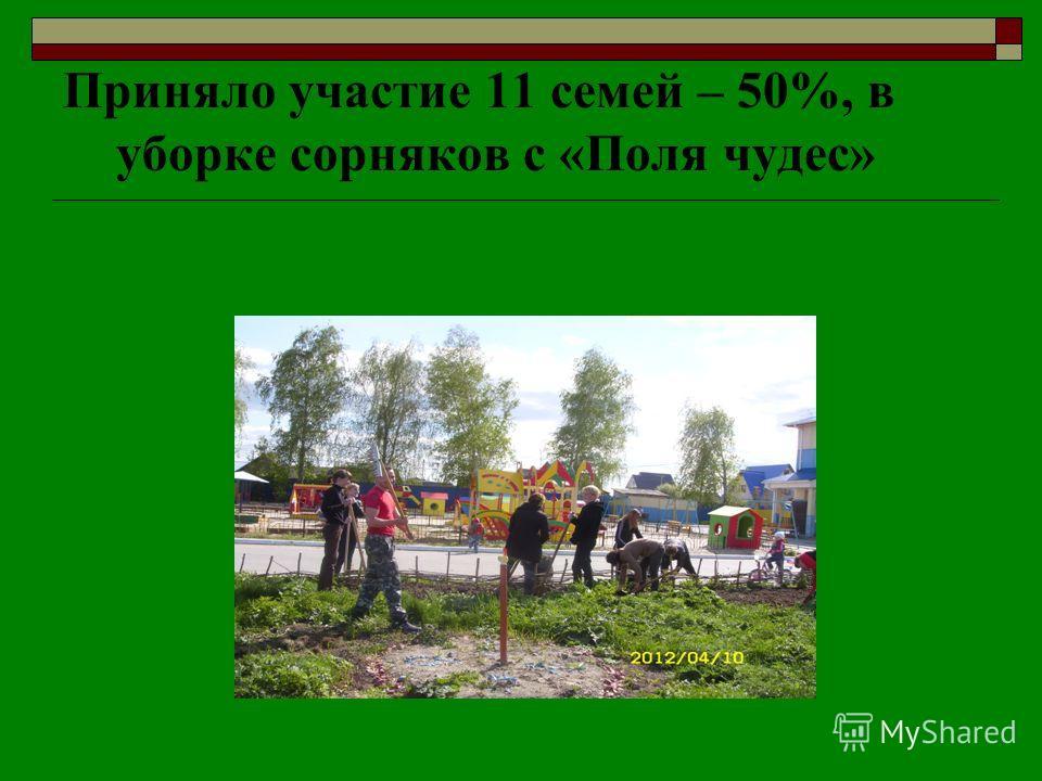 Приняло участие 11 семей – 50%, в уборке сорняков с «Поля чудес»