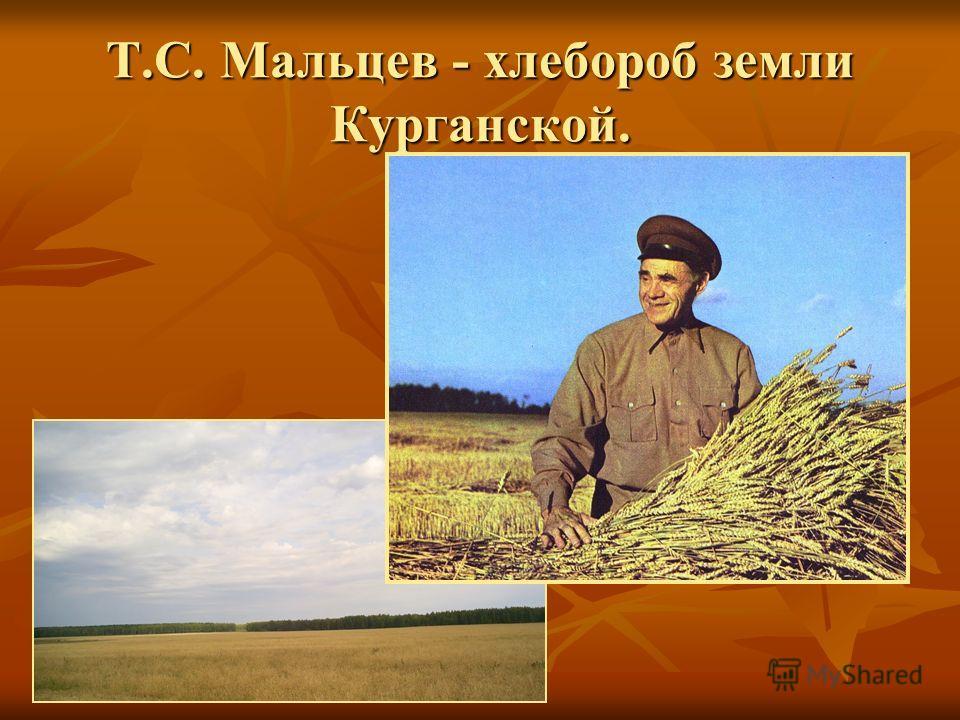Т.С. Мальцев - хлебороб земли Курганской.