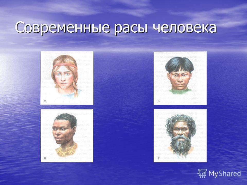Современные расы человека
