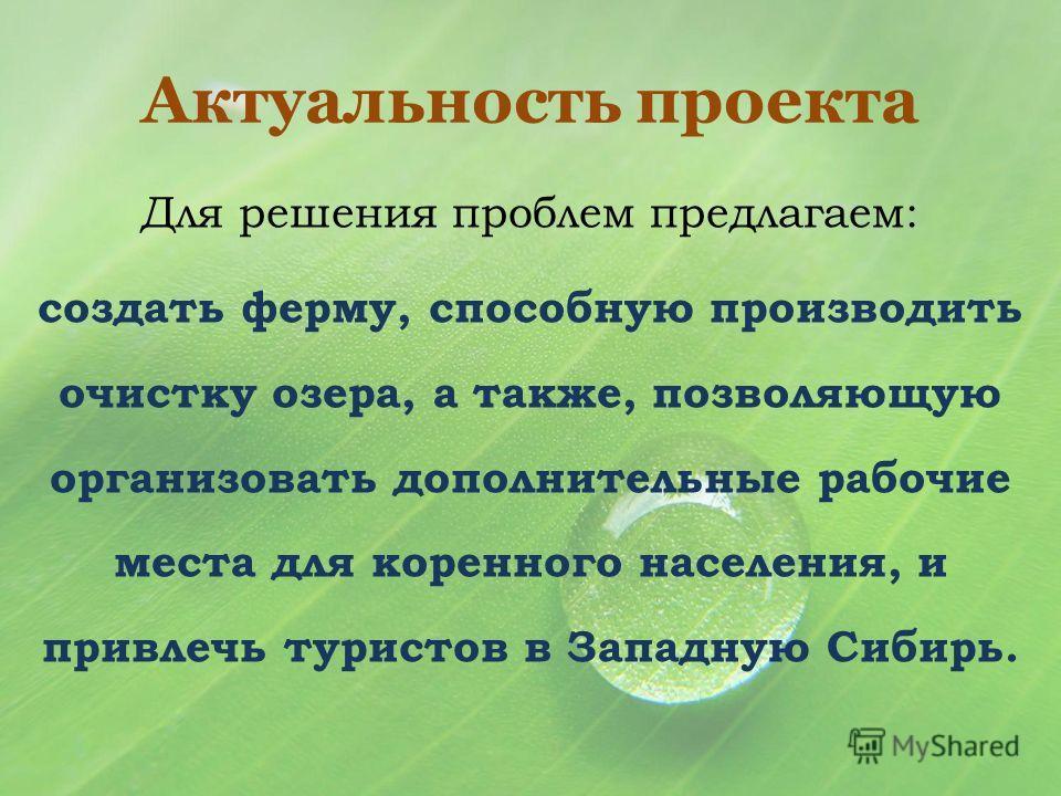 Для решения проблем предлагаем: создать ферму, способную производить очистку озера, а также, позволяющую организовать дополнительные рабочие места для коренного населения, и привлечь туристов в Западную Сибирь.