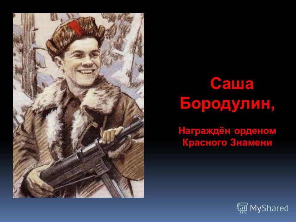 Саша Бородулин, Награждён орденом Красного Знамени
