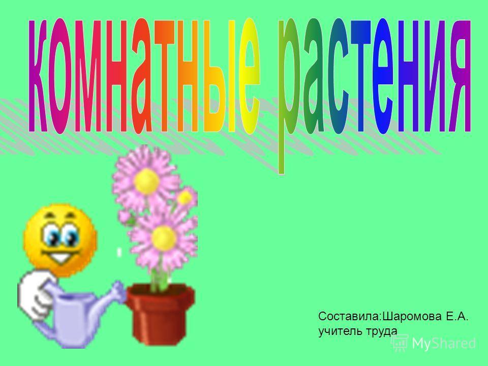 Составила:Шаромова Е.А. учитель труда
