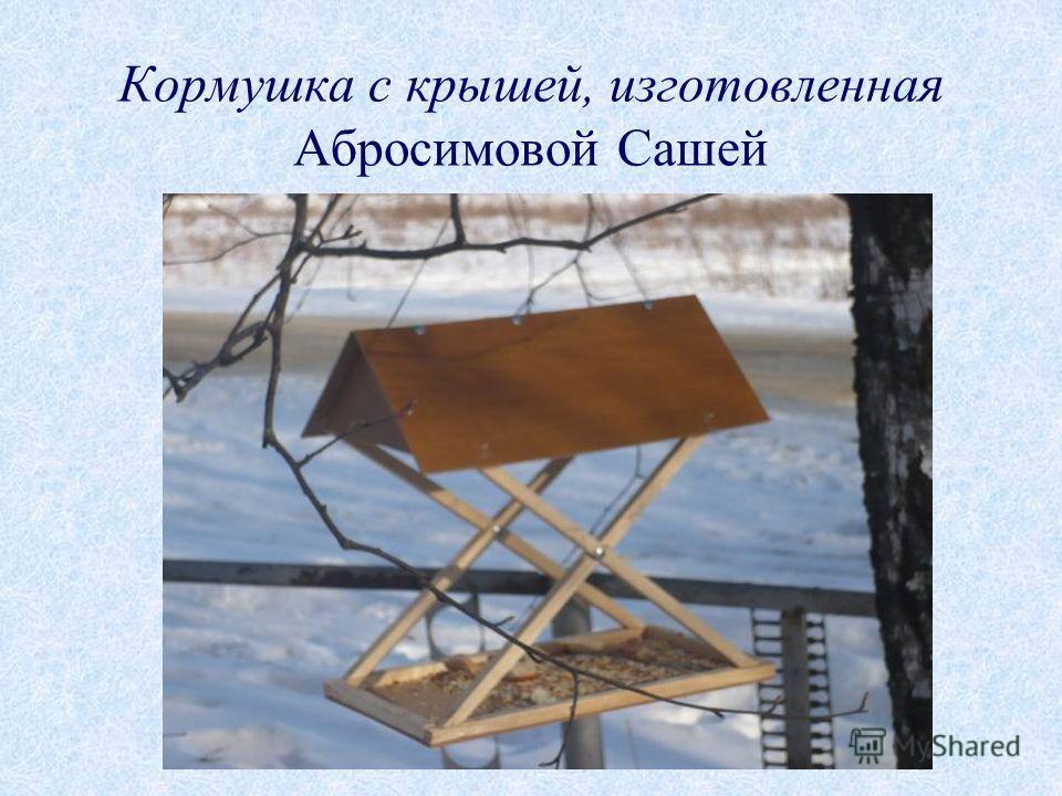 Кормушка с крышей, изготовленная Абросимовой Сашей