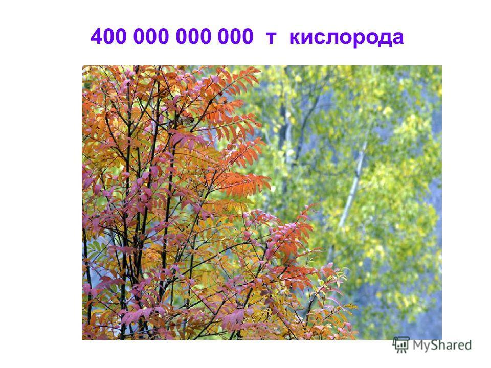 400 000 000 000 т кислорода