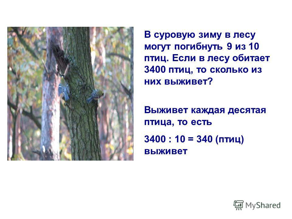 В суровую зиму в лесу могут погибнуть 9 из 10 птиц. Если в лесу обитает 3400 птиц, то сколько из них выживет? Выживет каждая десятая птица, то есть 3400 : 10 = 340 (птиц) выживет