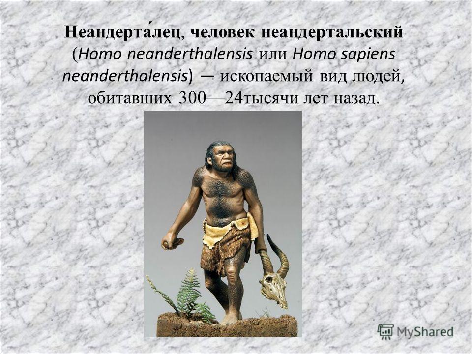 Неандерта́лец, человек неандертальский (Homo neanderthalensis или Homo sapiens neanderthalensis) ископаемый вид людей, обитавших 30024тысячи лет назад.