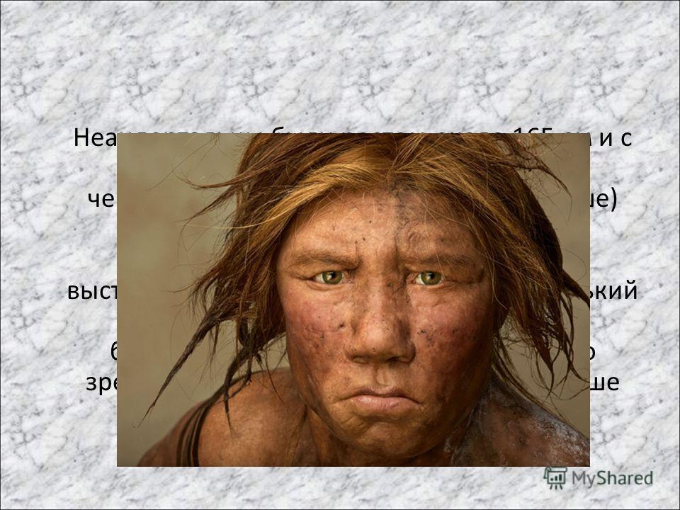 Неандертальцы были ростом около 165 см и с массивным телосложением. Объёмом черепной коробки (14001600 см³ и выше) превосходили современных людей. Их отличали мощные надбровные дуги, выступающий широкий нос и очень маленький подбородок. могли быть ры